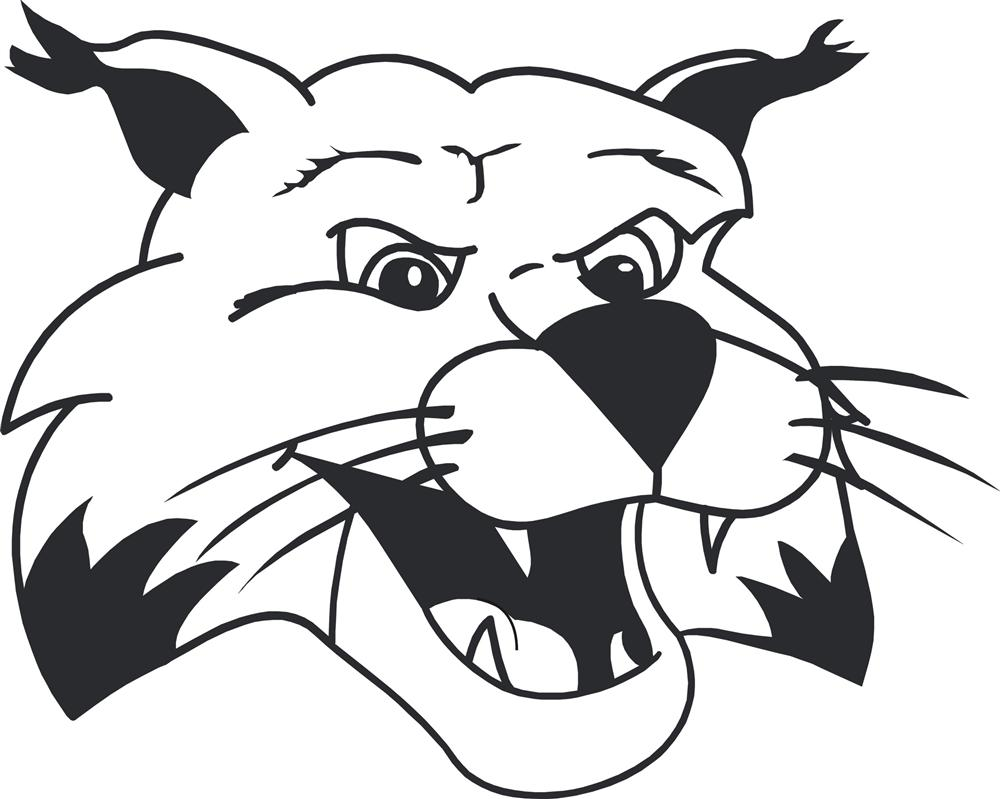 Image result for holman bobcats clipart