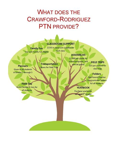 What Does the PTN Provide?