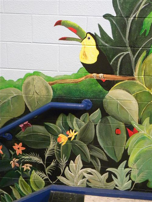 a Tucan from the Jungle Mural