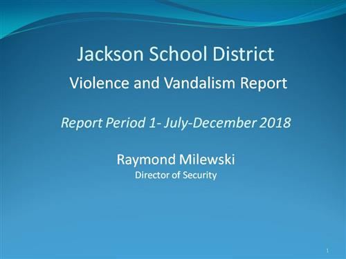 Cover of Violence and Vandalism Report