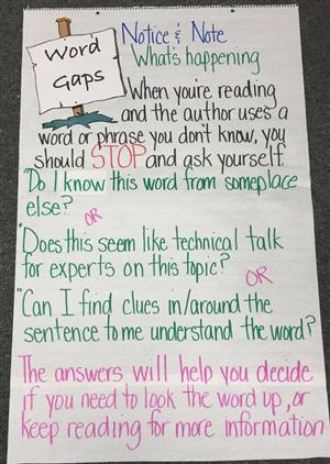 Word Gap