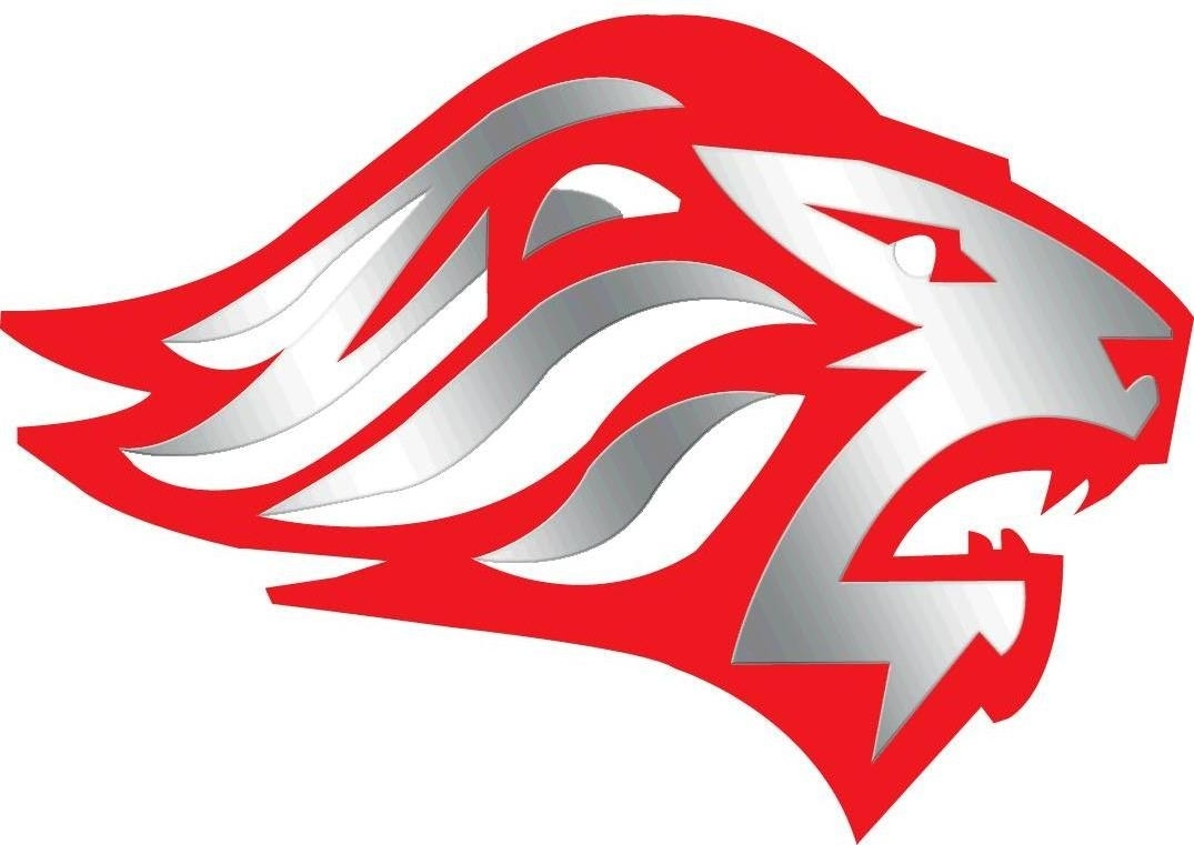 Logo of Jackson Liberty High School Lion